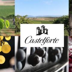 Weingut Cantine Riondo - Castelforte