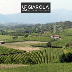 Weingut Azienda Agricola Griarola