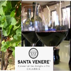 Weingut Santa Venere