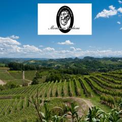 Weingut Monchiero Carbone