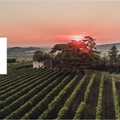 Weingut Azienda Agricola Graziano Prá