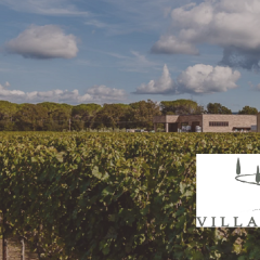 Weingut Villanoviana