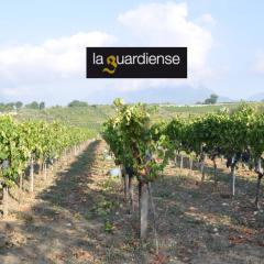 Weingut La Guardiense
